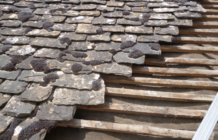 Stonefield Slate Roofing In Oxford